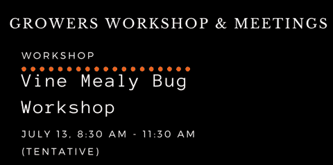 Growers Workshop Mealy Bug