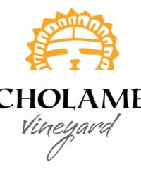 Cholame Vineyard