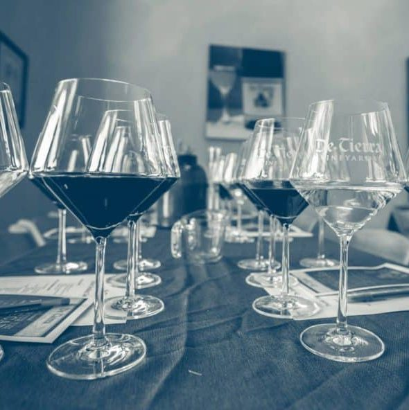 De Tierra Punch Down: Wine Faults Class