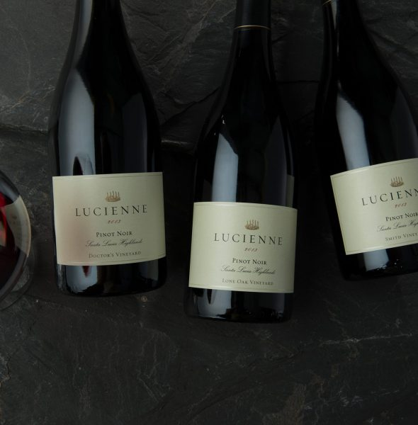 Lucienne North to South Educational Tasting