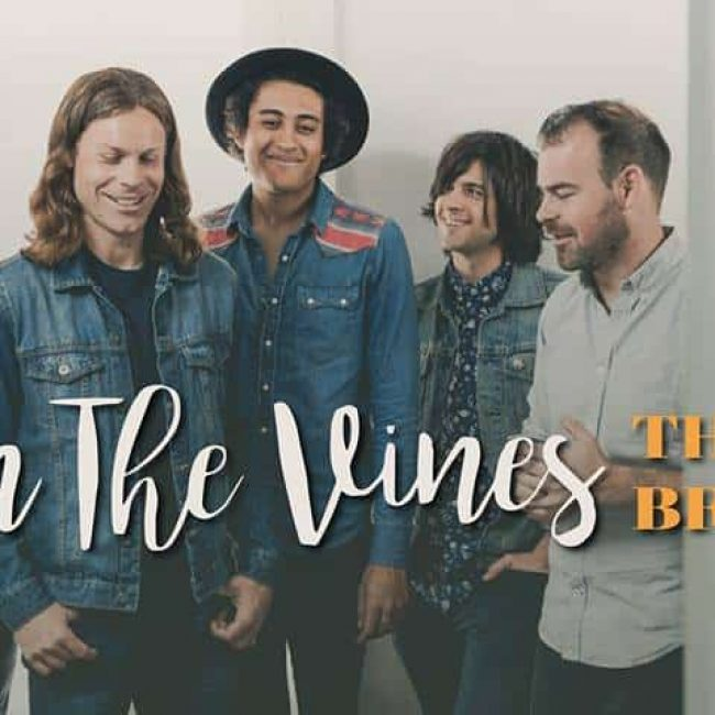 Live in the Vines: The Coffis Brothers, The Hashknife Oufit & Tom VandenAvond
